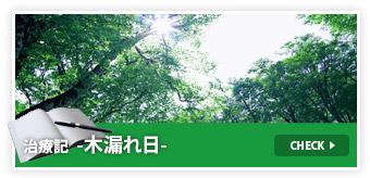 治療記-木漏れ日-